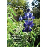 Trust in the Lord Scripture Greeting Card from Israel